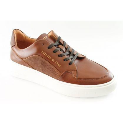 Sneaker Bruin